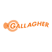 gallagher 175x